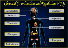 Chemical Co-ordination and Regulation
